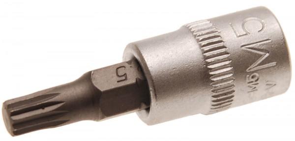 BGS 5105-M5 Bit-Einsatz, Innenvielzahn, 6,3 (1/4), M5